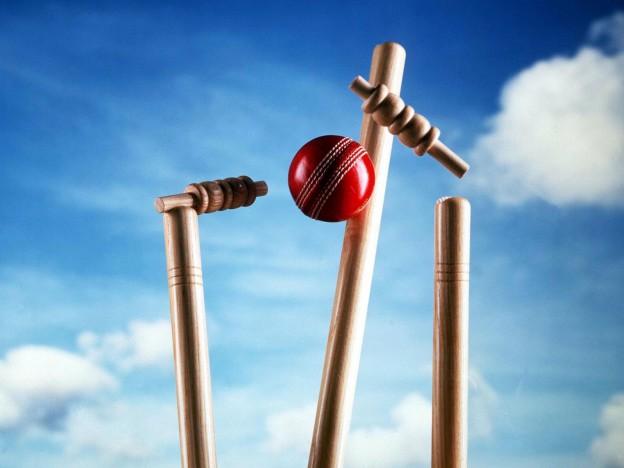 cricket-image